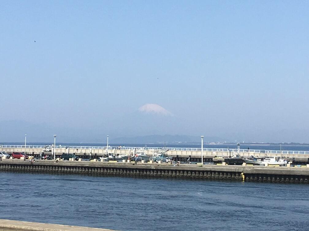 薄っすら見えた富士山